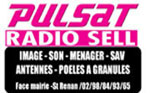 Radio-Sell-blog-2013   www.pulsat.fr